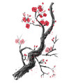 realistic sakura blossom - japanese cherry vector image vector image