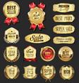 retro vintage golden laurel wreath badge and vector image vector image