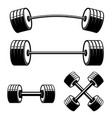 set barbell and dumbbells isolated on white vector image vector image