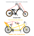 Bicycle types set III vector image vector image
