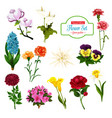 flower of spring blooming plant and tree icon vector image