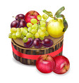 grapes apples and plums realistic autumn vector image vector image