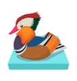 Mandarin duck icon cartoon style vector image vector image