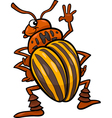 potato beetle insect cartoon vector image