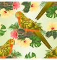 seamless texture bird sun conure parrot vector image vector image