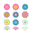 set beautiful colorful flowers vector image