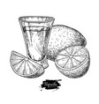tequila shot glass with lime mexican alcohol vector image vector image