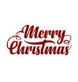 text marry christmas vector image vector image