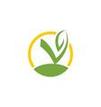 vegan icon vector image vector image