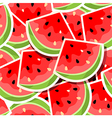 background with watermelon vector image vector image