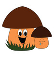 bamushroom on white background vector image