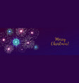 horizontal web banner with fireworks displaying in vector image vector image