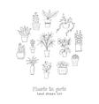 set plants in a pot hand drawn doodle sketch vector image vector image