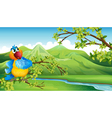 A parrot in front of the high mountains vector image vector image