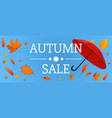 autumn sale concept banner cartoon style vector image