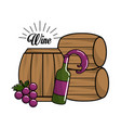 bottle of wine barrel and grape icon vector image vector image