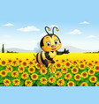 cartoon bee in the sunflower field vector image vector image