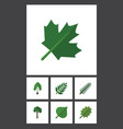 flat icon ecology set of acacia leaf alder vector image vector image