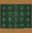 grass chalk draw line icons set vector image vector image