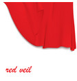 Hanging red cloth vector image vector image