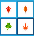 icon flat leaf set of linden leafage hickory and vector image vector image