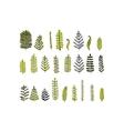 Leaf set sketch for your design vector image vector image