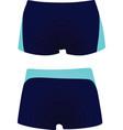 men swimsuit vector image vector image