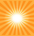 the sun39s rays pattern background vector image vector image