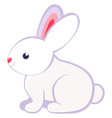 cartoon rabbit bunny icon poster vector image vector image