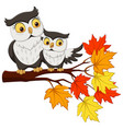 cute mother owl cartoon and baon tree branches vector image vector image