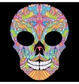 floral skull on black background vector image