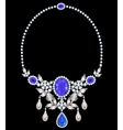 necklace with amethyst vector image