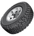 Offroad vehicles wheel vector image vector image