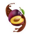 plum in chocolate splash of drop brown chocolate vector image vector image