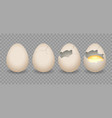 realistic cracked eggs vector image vector image