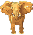 red african elephant vector image vector image