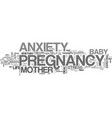 anxiety and panic attack text word cloud concept vector image vector image