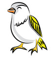 beautiful bird on white background vector image vector image