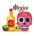 day of the dead mask with tequila bottle vector image vector image