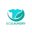 eco laundry vector image