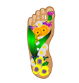 foot with flowers vector image vector image