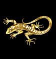 golden lizard vector image