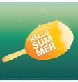 Hello summer creative concept background vector image