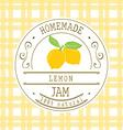 Jam label design template for lemon dessert vector image