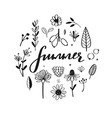 rustic and floral doodle set hand drawn vector image vector image