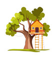 treehouse house on tree with ladder playground vector image vector image