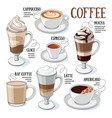 coffee guide vector image