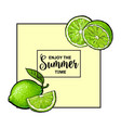 enjoy summer banner postcard design with lime vector image vector image