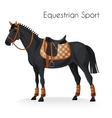 Horse with equestrian sport equipment vector image