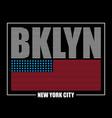 bklyn usa flag t-shirt vector image vector image